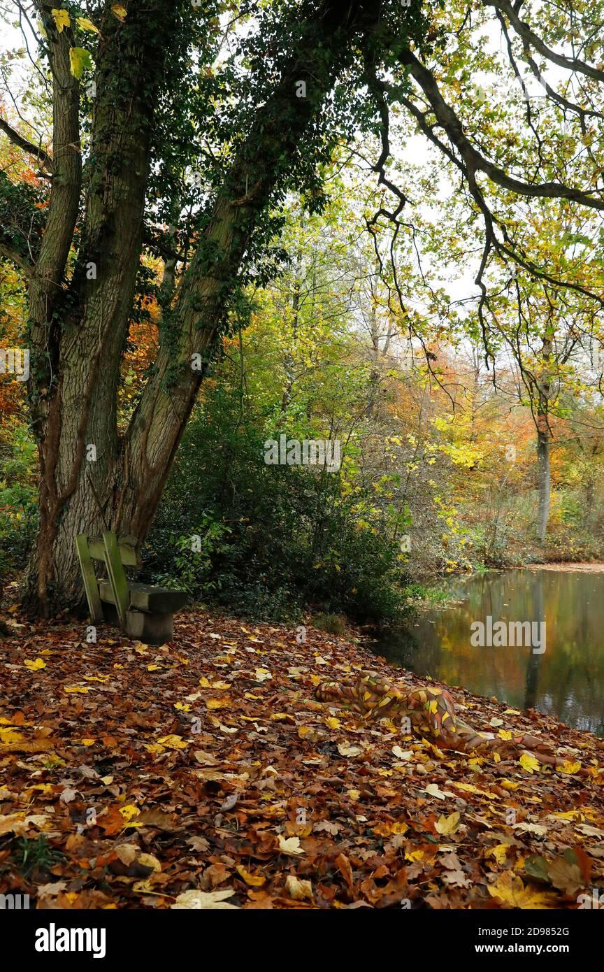Nature Art: Feuilles d'automne bodypainting et photoshooting avec le modèle Lena Kiel dans un étang forestier à Bruennighausen le 01 novembre 2020 - Bodypainting artiste:: Joerg Duesterwald Banque D'Images