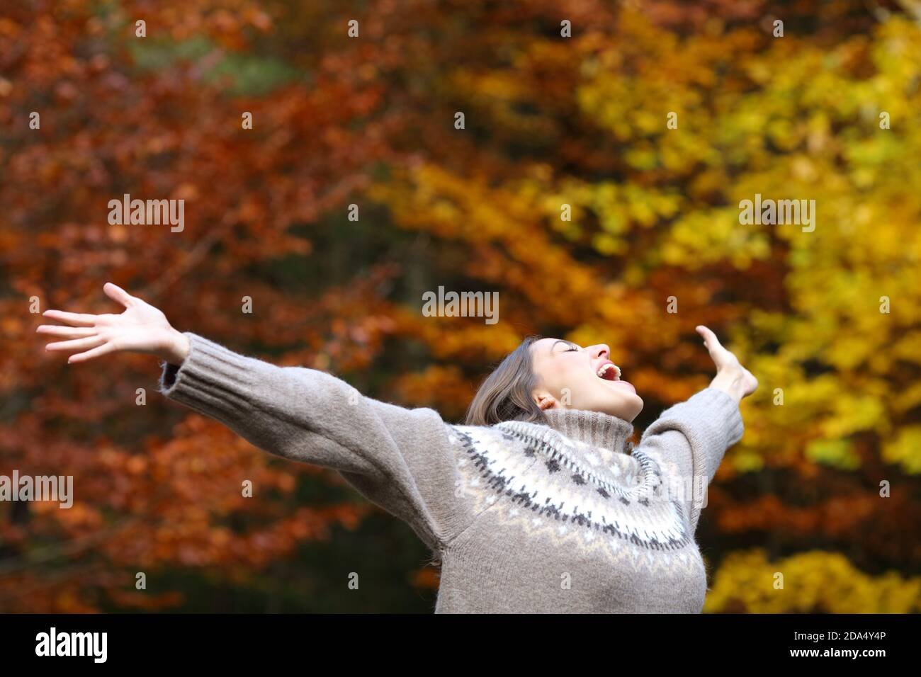 Femme excitée célébrant l'automne s'étirant les bras dans une belle forêt Banque D'Images