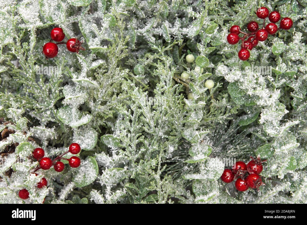 Arrière-plan de Noël avec branches de pin et décoration de baies rouges Banque D'Images