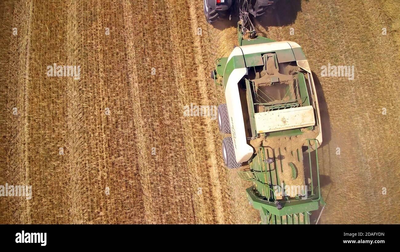 Vue aérienne de la récolteuse de foin, de la machine agricole, des champs de blé de récolte Banque D'Images