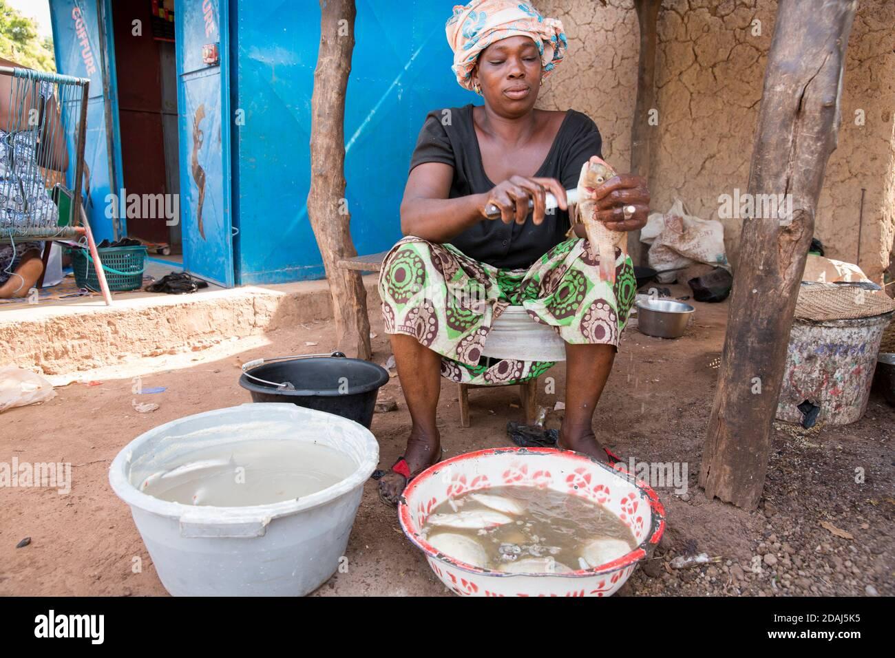 Selingue, Mali, le 25 avril 2015; le nettoyeur de poisson Nantine Senayoko, 45 ans, travaille tous les jours et fait entre 3,000 et 3,500 CFA par jour. Banque D'Images