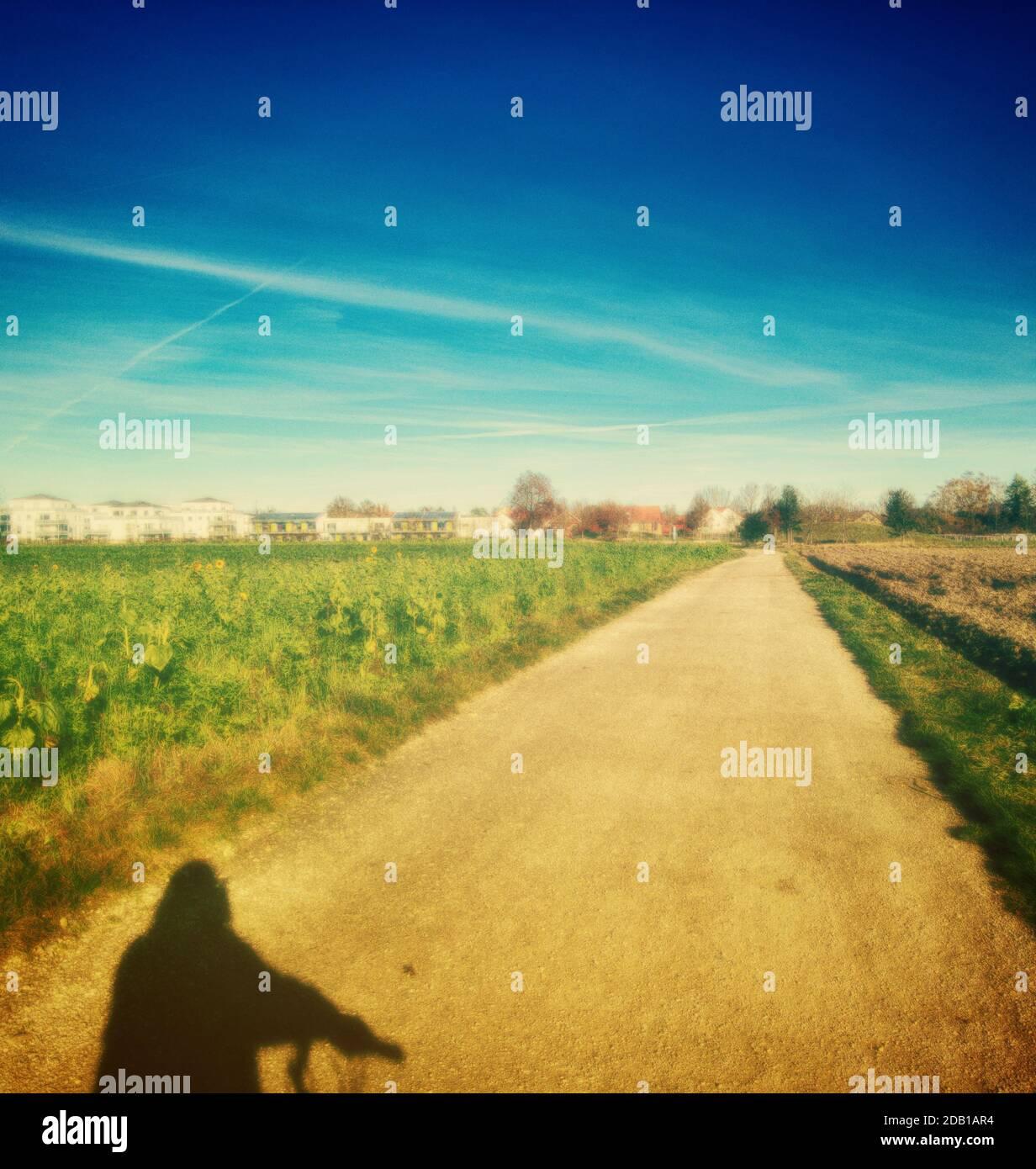 ombre du motard sur la route sale Banque D'Images