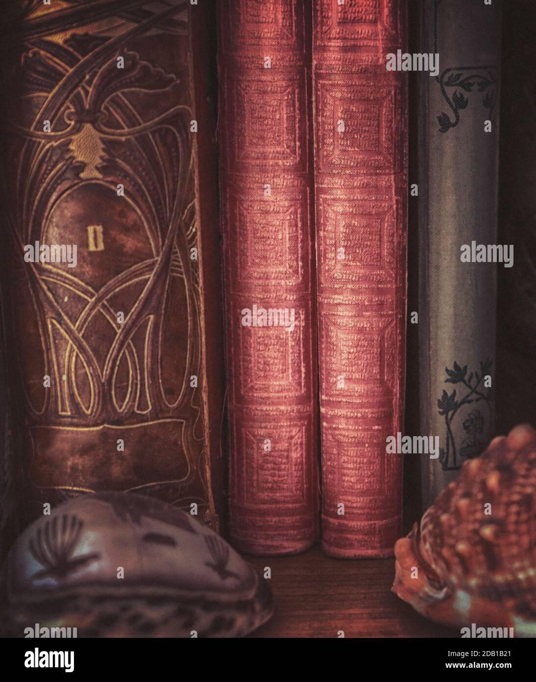 Encore la vie : des livres anciens sur une étagère et des coquilles décoratives Banque D'Images
