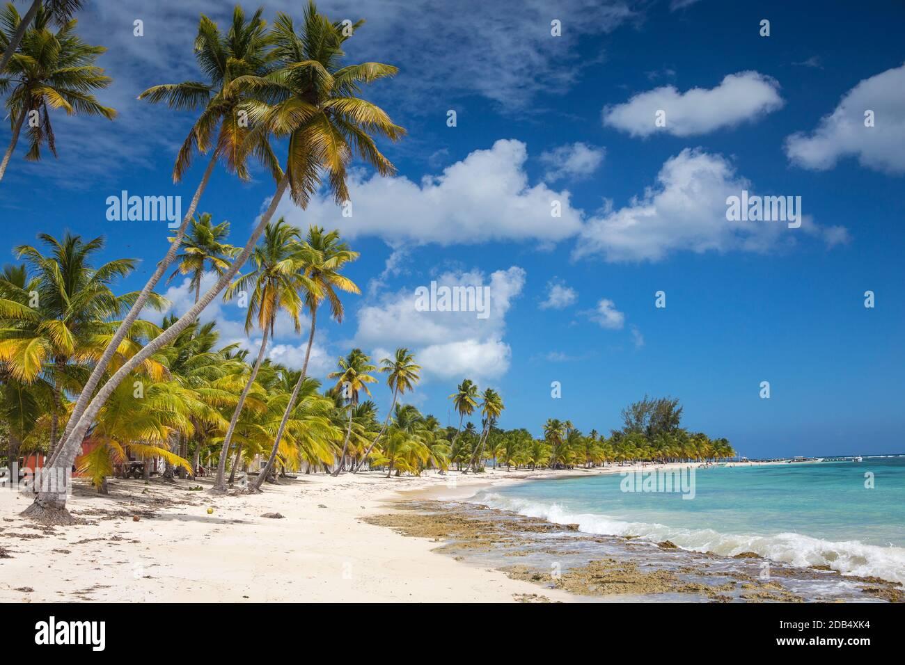République dominicaine, Punta Cana, Parque Nacional del Este, l'île de Saona, Mano Juan, un pittoresque village de pêcheurs Banque D'Images