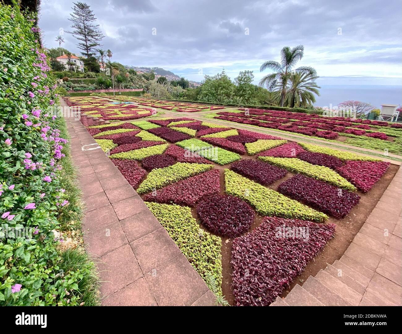 Jardins botaniques de Madère Banque D'Images
