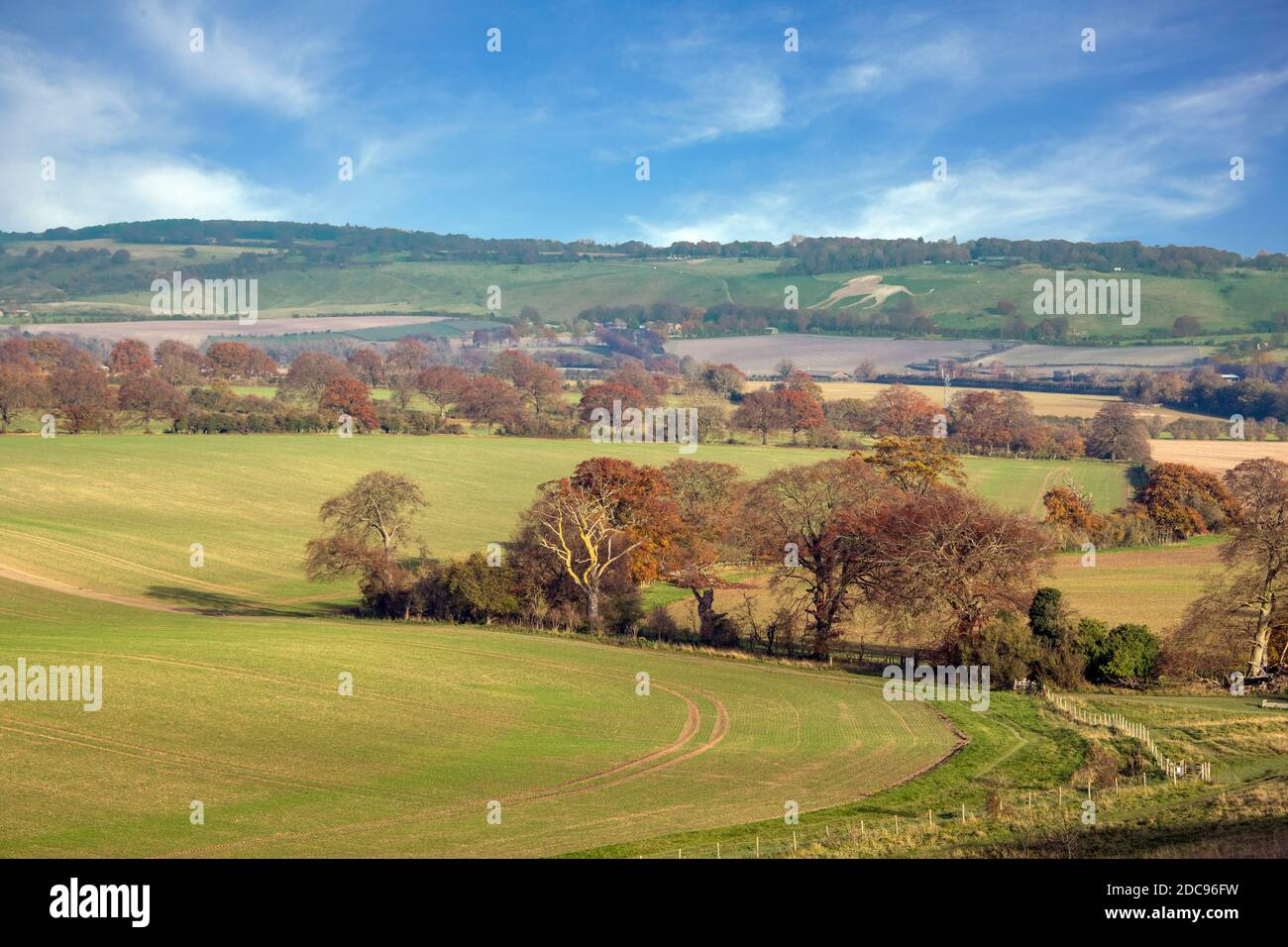 Countrysde Chiltern Hills Hertfordshire Angleterre Banque D'Images