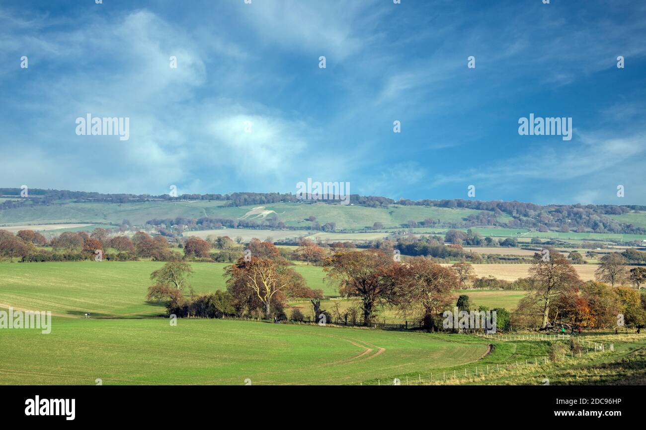Countrysde ChilWtern Hills Hertfordshire Angleterre Banque D'Images