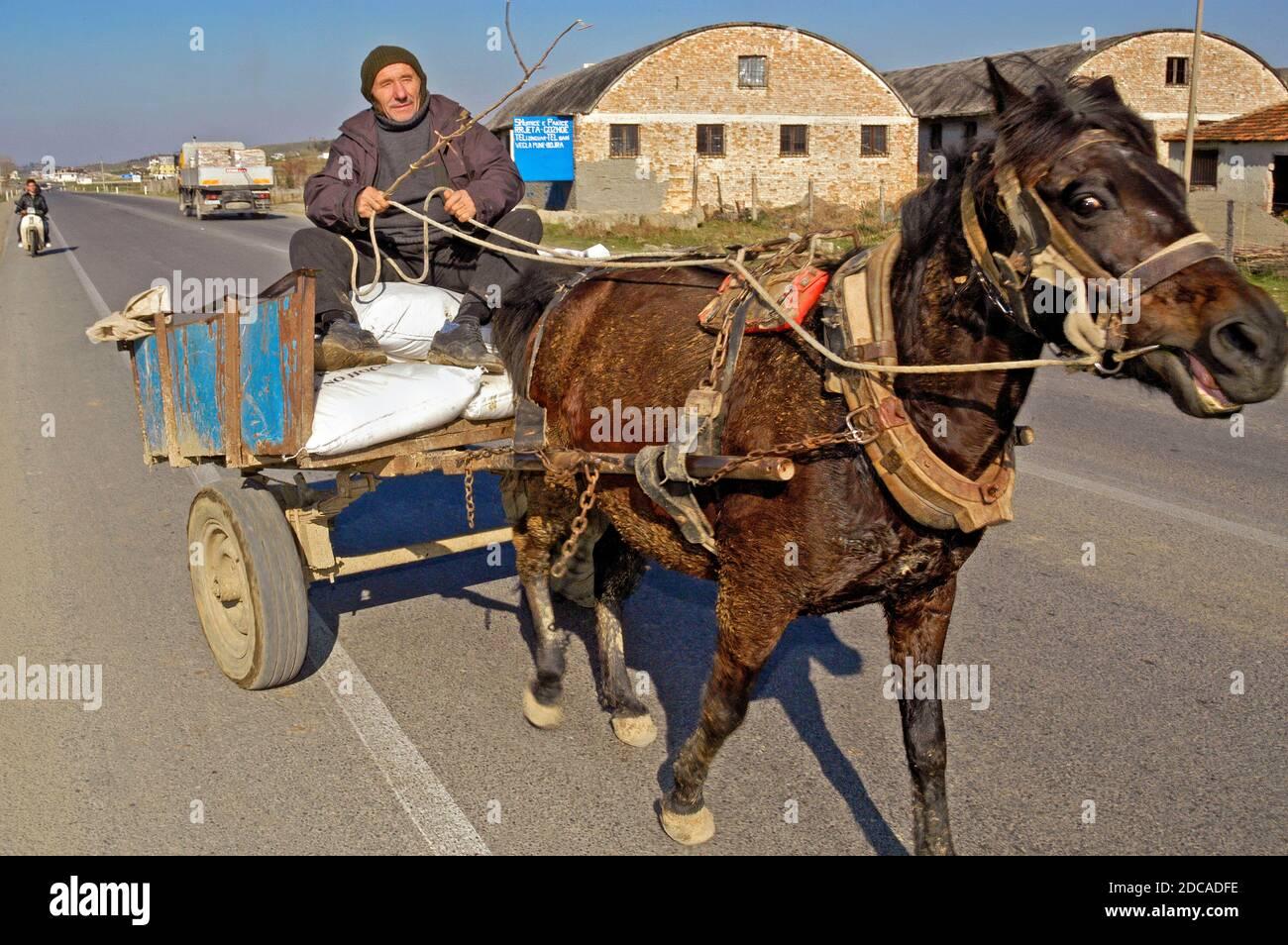 Cheval et calèche, Albanie rurale Banque D'Images