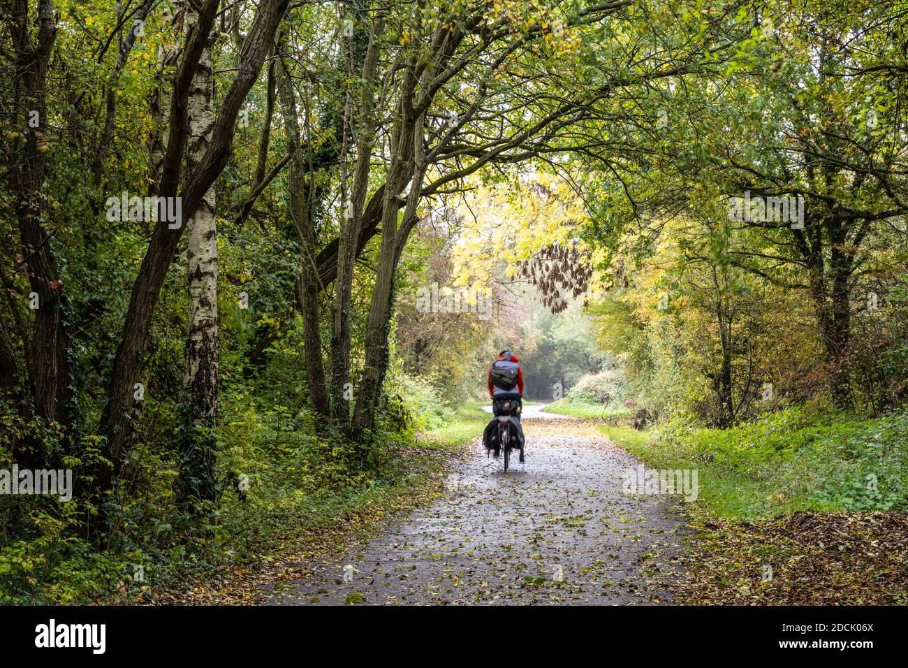 Un cycliste de tourisme traverse un tunnel d'arbres aux couleurs automnales sur la branche Westerleigh du chemin de fer de Bristol et Bath. Banque D'Images