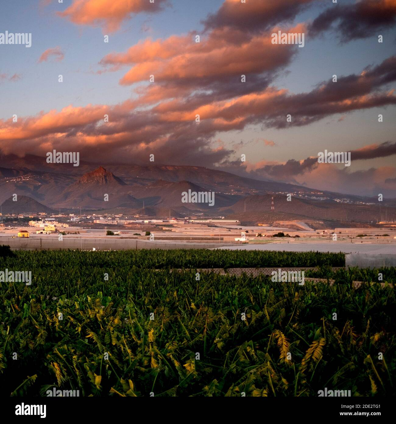 Paysage coucher de soleil vue magnifique sur la plantation de bananes et les montagnes en arrière-plan avec des nuages d'émerveils colorés dans le ciel bleu Banque D'Images