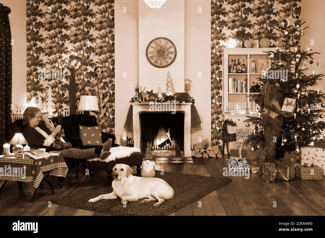 """Peinture de Noël avec la grand-mère Sabine S., le chien Louis, le modèle Marilena comme lampe de plancher et le modèle Darky comme un cadeau au restaurant Castle Hehlen. Travail sur le clip de Noël """"le Noël de l'artiste - UN Bodypainting clip vidéo de l'atelier Düsterwald"""" par Jörg Düsterwald et Alexander grosse-Strangmann. Hehlen le 28 novembre 2020 Banque D'Images"""