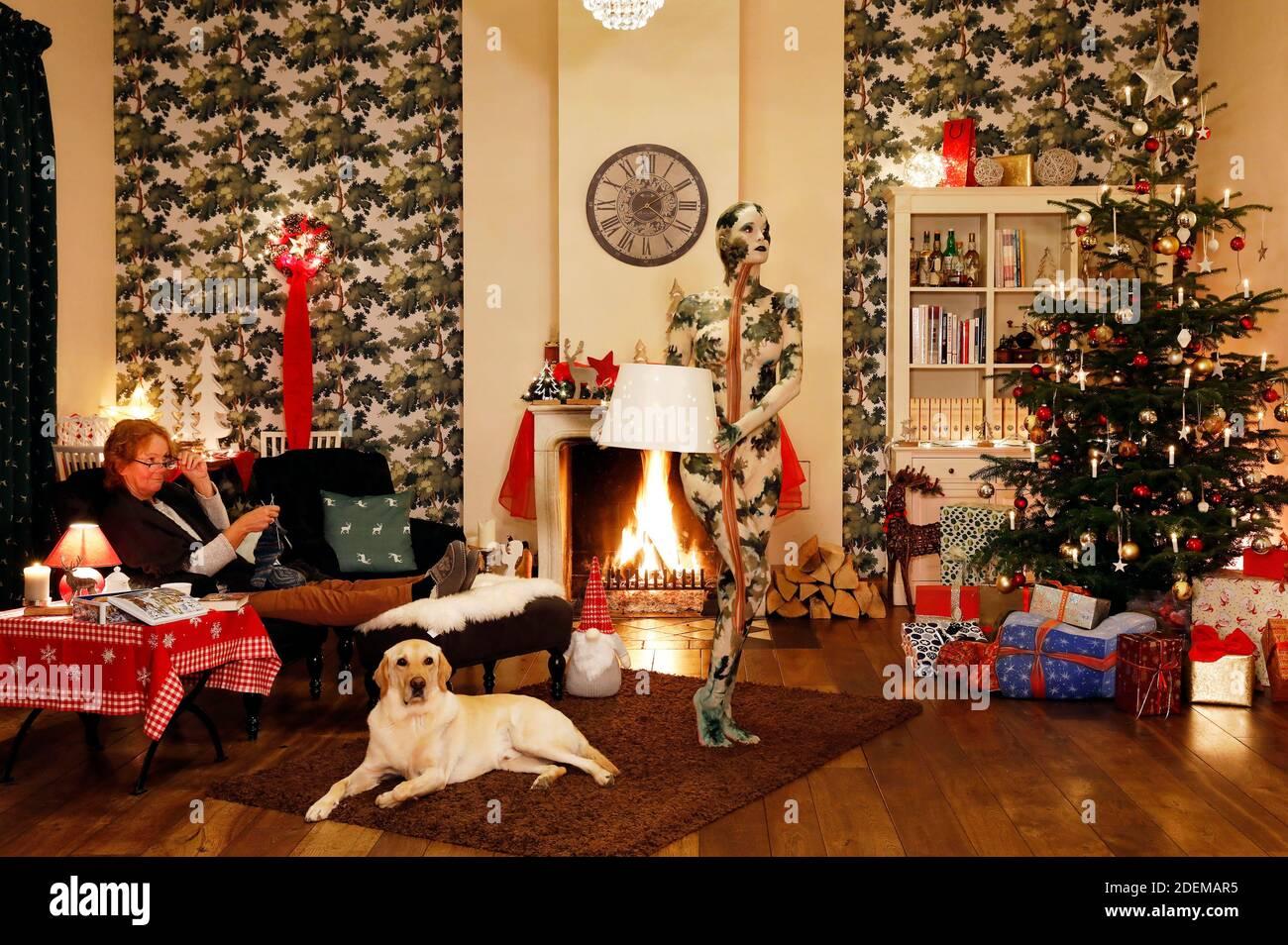 """Peinture de Noël avec la grand-mère Sabine S., chien Louis, modèle Marilena comme une lampe de plancher qui laisse l'ensemble et modèle Darky comme un cadeau au restaurant Château Hehlen. Travail sur le clip de Noël """"le Noël de l'artiste - UN Bodypainting clip vidéo de l'atelier Düsterwald"""" par Jörg Düsterwald et Alexander grosse-Strangmann. Hehlen le 28 novembre 2020 Banque D'Images"""