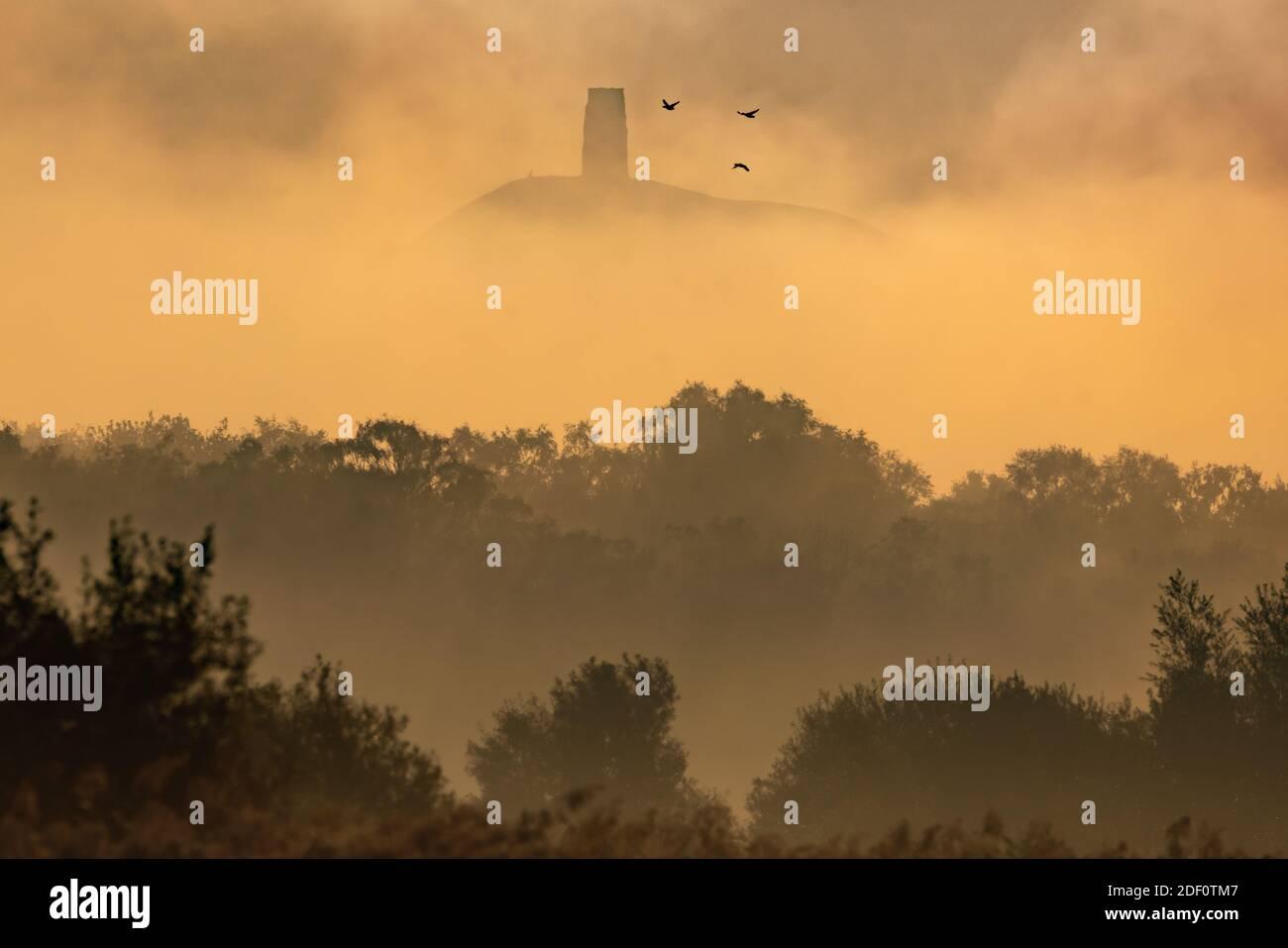 Equinox d'automne : lumière et brume matinales au-dessus de Glastonbury Tor dans le Somerset, vues depuis les marais d'Avalon le dernier jour avant la fin officielle de l'été. Banque D'Images