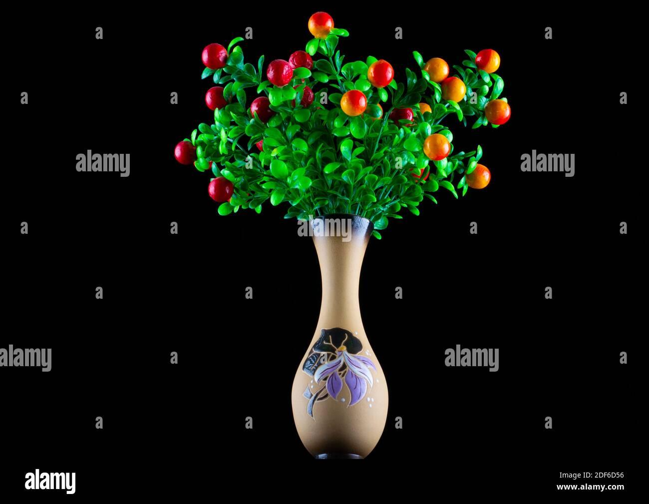 Plantes fantastiques avec des fruits dans un vase en céramique sur un arrière-plan noir Banque D'Images