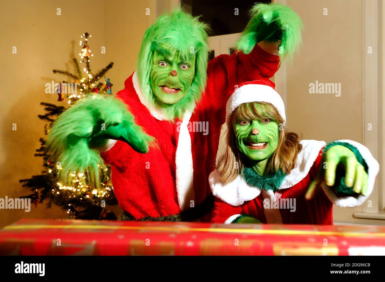 GEEK ART - Bodypainting and Transformaking: 'The Grinch Steals Christmas' photoshooting with Enrico Lein as Grinch and Maria Skupin as Mme Grinch at Villa Czarnecki in Hameln on December 7, 2020 - UN projet du photographe Tschiponnique Skupin et du peintre du corps Enrico Lein Banque D'Images