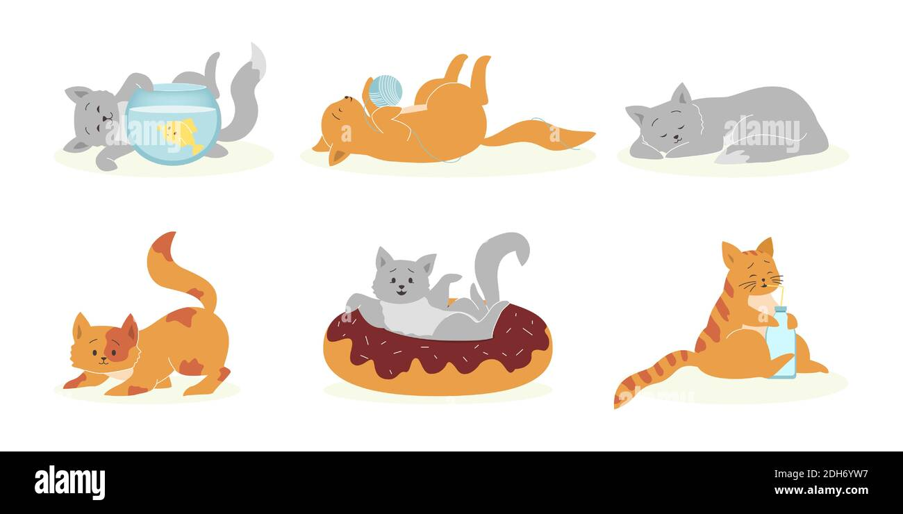 Ensemble de chats gris et orange amusants. Animaux de compagnie drôles, chatons douillets et mignons jouant, dormant, mangeant. Illustration vectorielle pour les animaux domestiques, félin, conc. Animaux Illustration de Vecteur