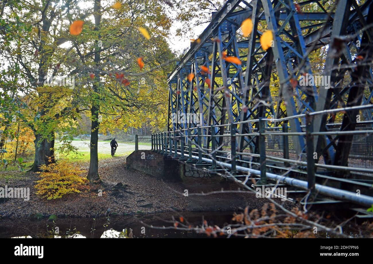 Photos pour une caractéristique sur Wellesley Woodland, Aldershot - automne Weekend Walks caractéristique. Pont sur le canal de Basingstoke. Banque D'Images