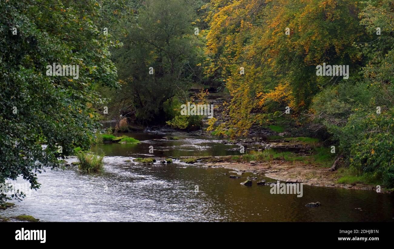 La rivière est suspendue avec des arbres à Guyzance.Samedi 3 octobre 2020. Banque D'Images