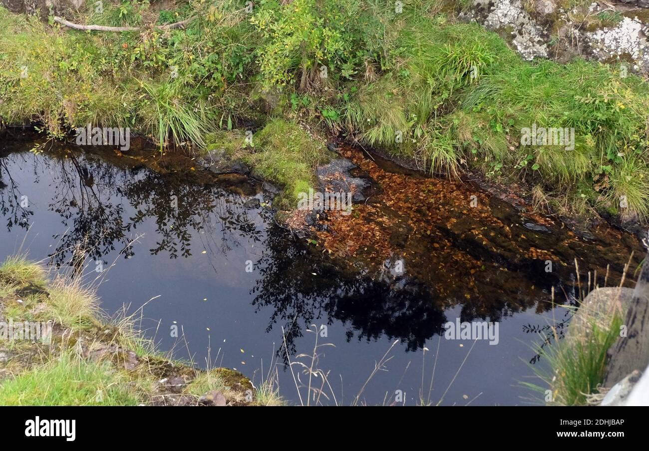 Wedder Leap où la légende a un voleur a volé un Wedder (brebis) et a essayé de sauter à travers cette gorge mais a été noyé.Samedi 3 octobre 2020. Banque D'Images