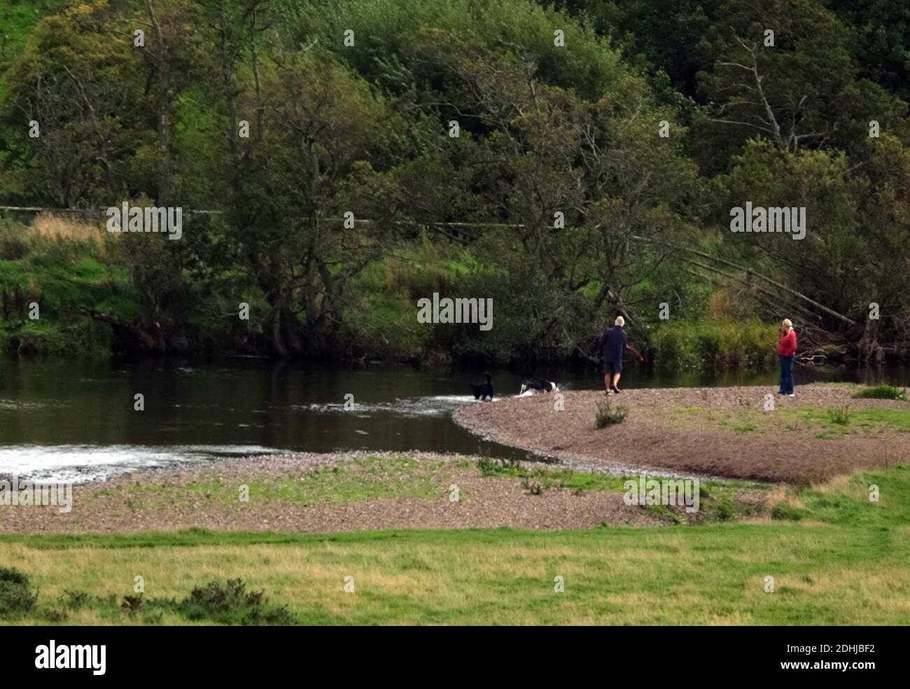 A l'est de Thropton, la rivière serpente lentement vers Rothbury.Samedi 3 octobre 2020. Banque D'Images