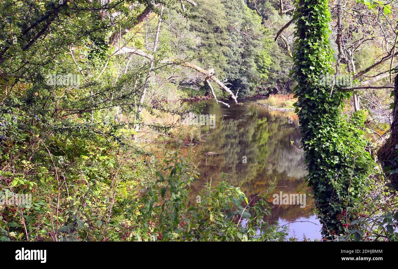 La rivière Coquet juste à l'est de Rothbury.Samedi 3 octobre 2020. Banque D'Images