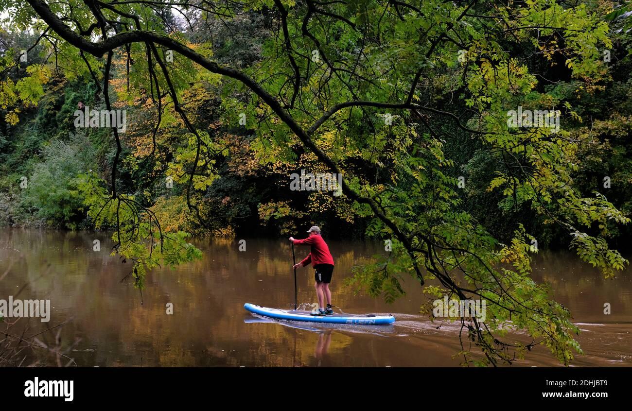 Couleur d'automne sur le River Wear, comté de Durham. Photo prise le 16 octobre 2020 Banque D'Images