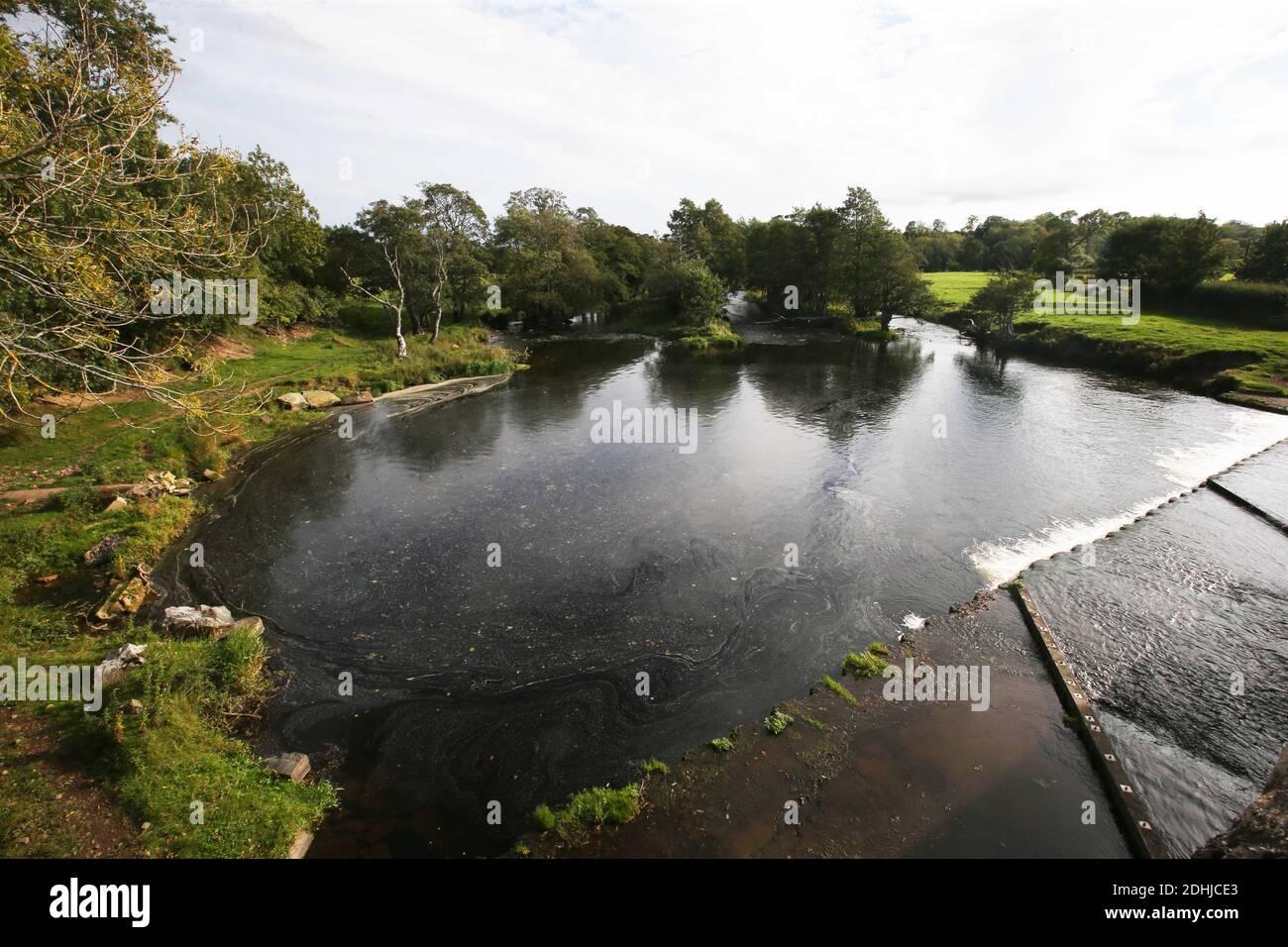 La rivière Coquet. En aval à Pauperhaugh.Samedi 3 octobre 2020. Banque D'Images