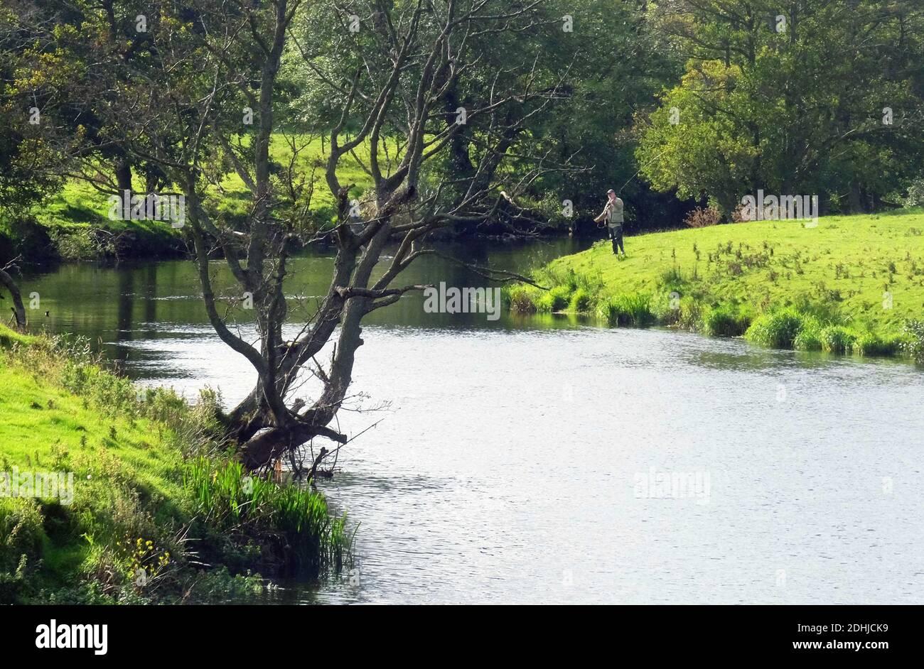 La rivière Coquet. Un pêcheur à la ligne à Pauperhaugh.Samedi 3 octobre 2020. Banque D'Images