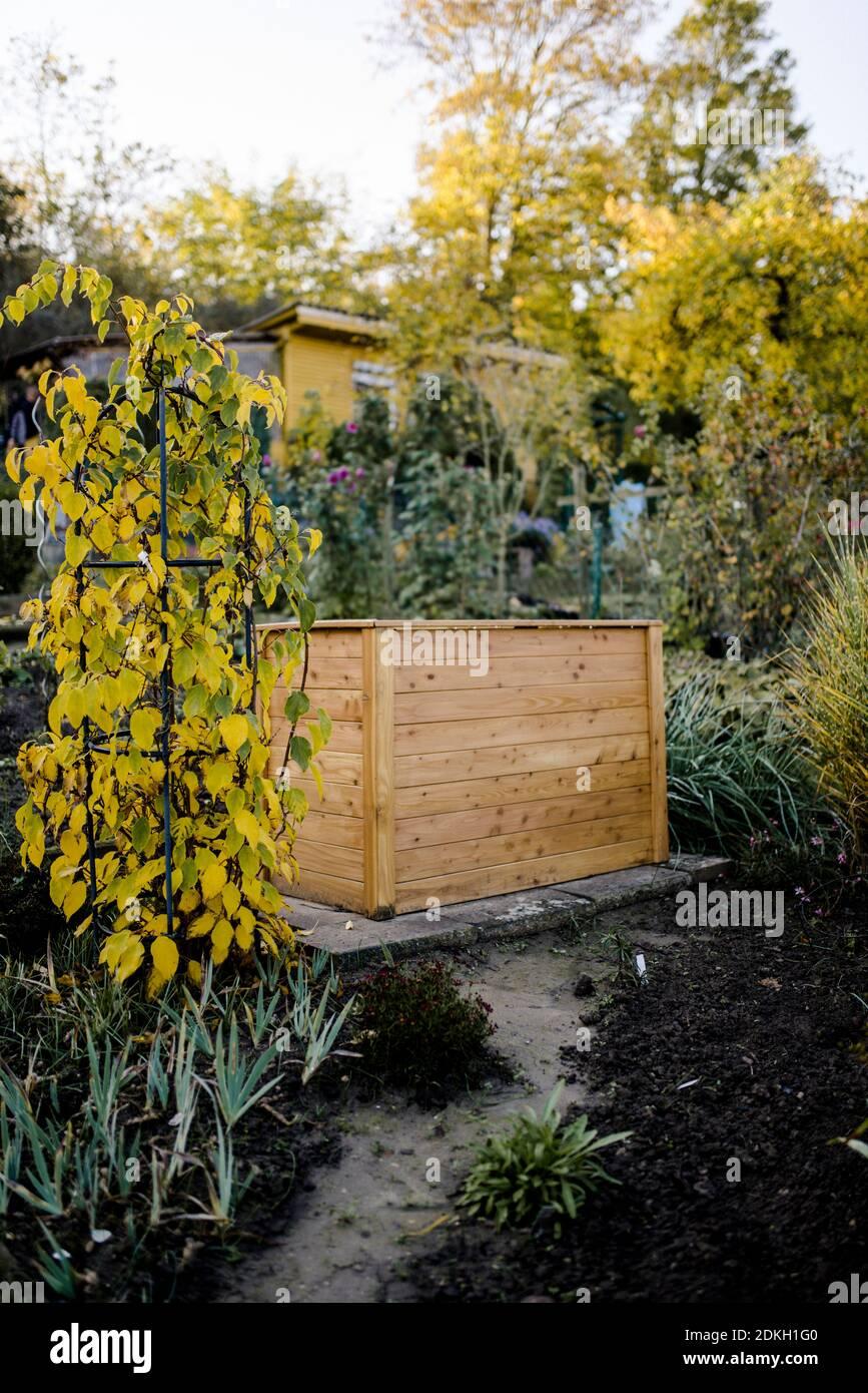 Lit surélevé, jardin d'allotement, automne Banque D'Images
