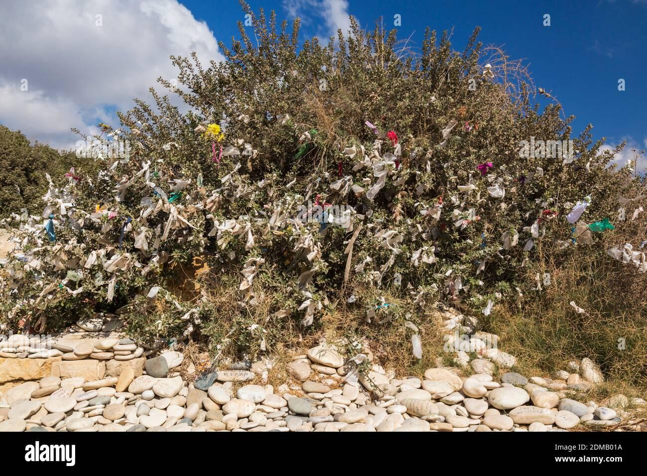 Pébbles lisses et arbre de souhaits avec des offrandes de prière liées aux branches de la plage de Petra tou Romiou, Pafos, Chypre. Banque D'Images