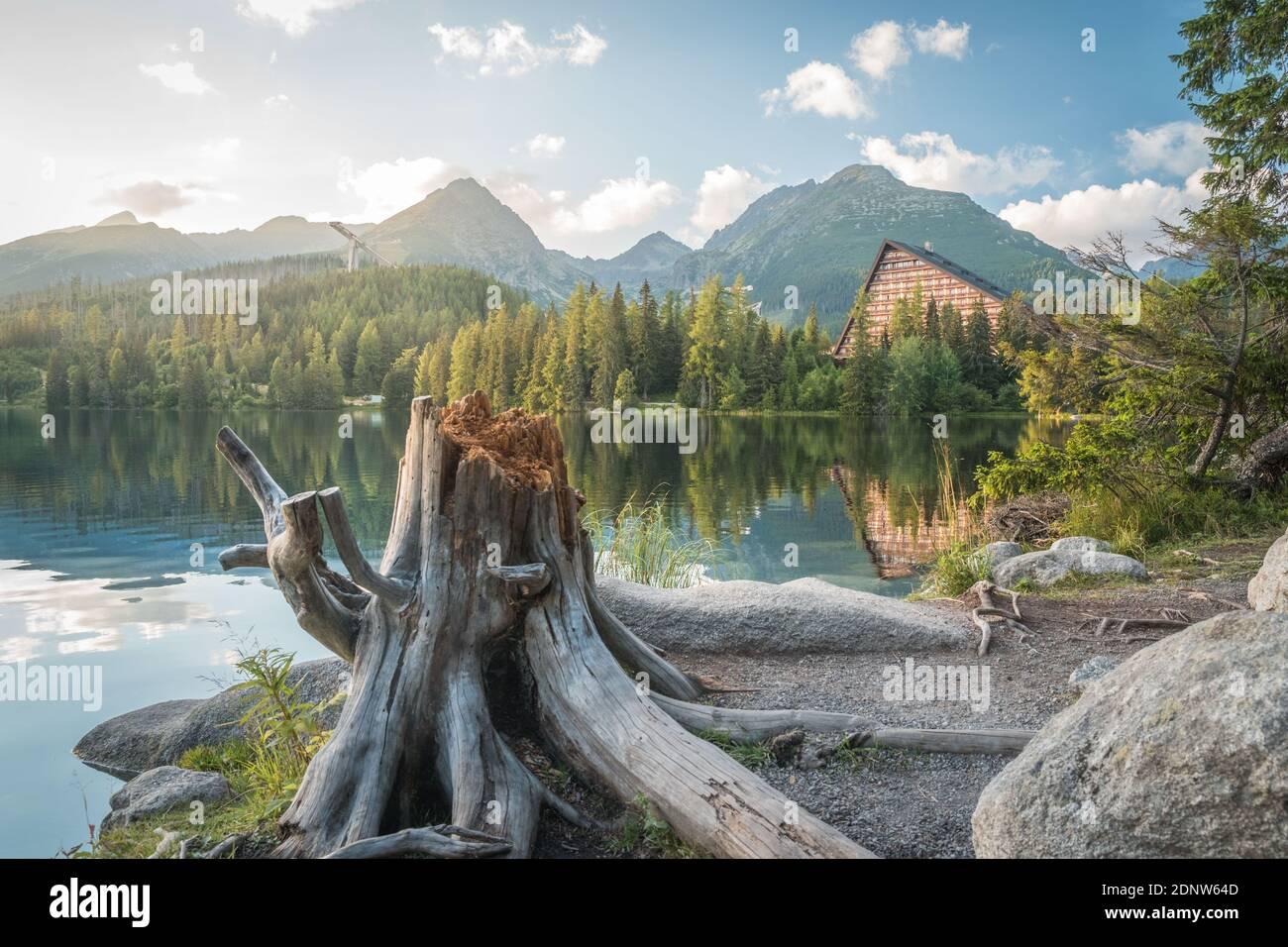 Lac de montagne Strbske Pleso avec une grande souche en premier plan dans le parc national de High Tatras. Slovaquie, Europe. Soirée en fin d'été au bord du lac. Banque D'Images