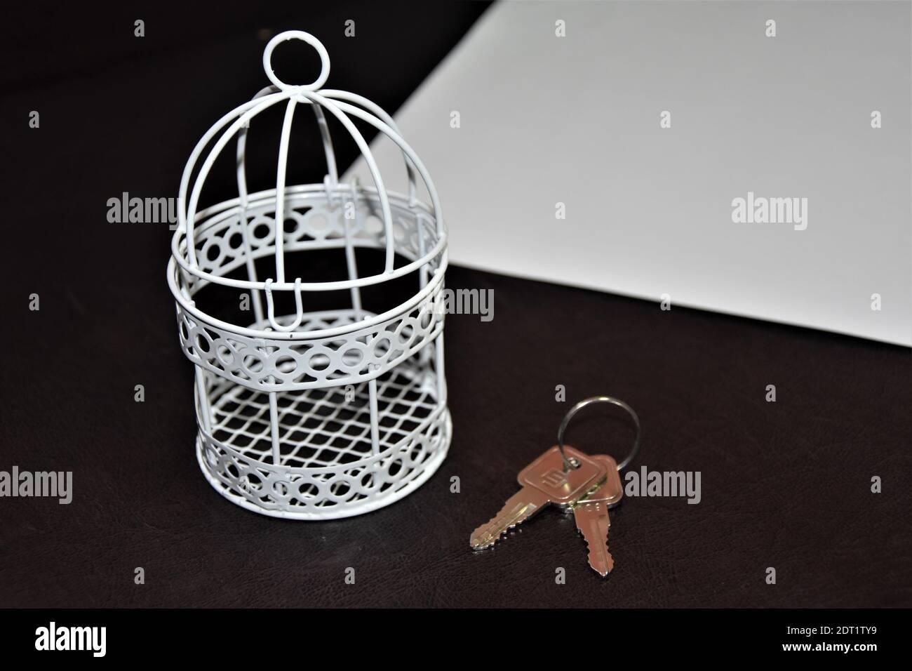 Vue en grand angle de la cage blanche et des clés sur fond noir Banque D'Images