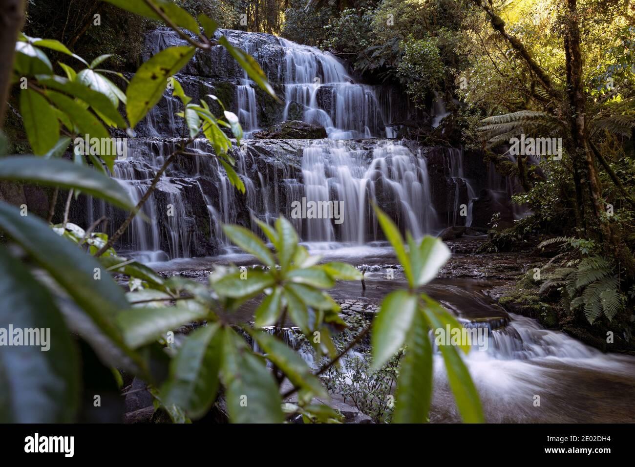 Les chutes de Purakuunui sont situées dans les Catlins, sur l'île du Sud, en Nouvelle-Zélande. Banque D'Images