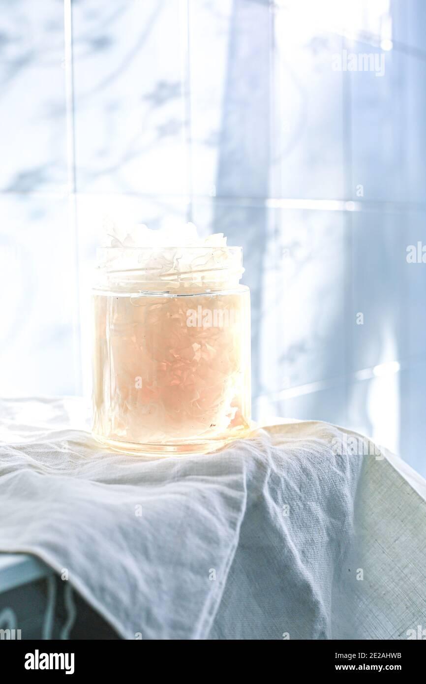 Champignon Tremella, également connu sous le nom de champignon de la neige Banque D'Images