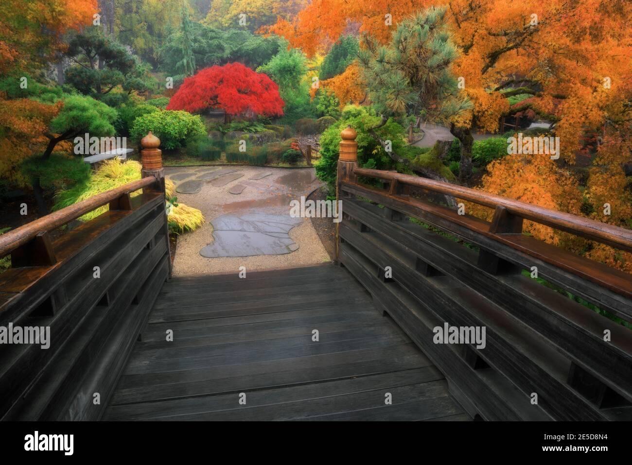 Couleurs d'automne éclatantes parmi les arbres du jardin japonais de l'île Tsuru à Gresham, Oregon. Banque D'Images