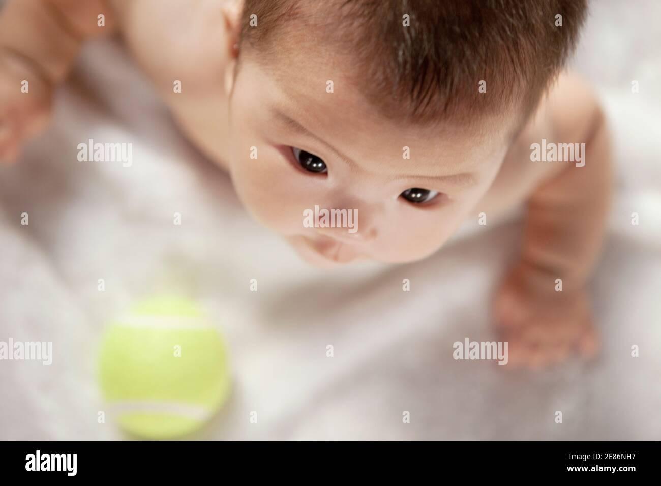 Un bébé regardant la balle de tennis photo de haute qualité Banque D'Images