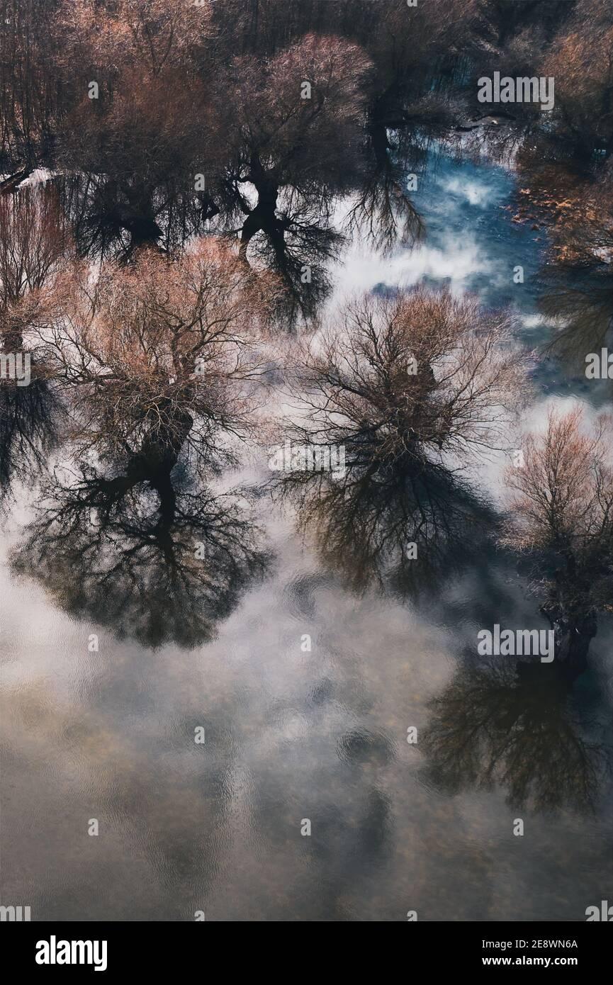 Vue aérienne de la plaine inondable des bois depuis le point de vue de drone, après-midi d'hiver ensoleillé Banque D'Images