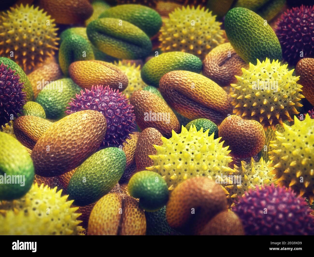 L'allergie au pollen est également connue sous le nom de rhume des foins ou de rhinite allergique. Banque D'Images