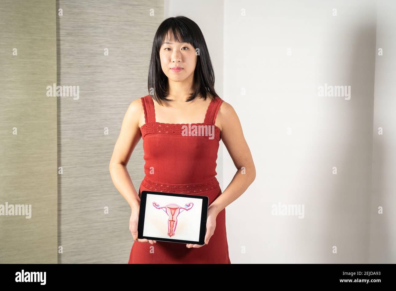 Femme tenant l'écran avec dessin des ovaires Banque D'Images