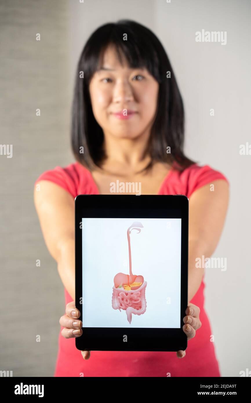 Femme tenant l'écran avec le dessin du tube digestif Banque D'Images
