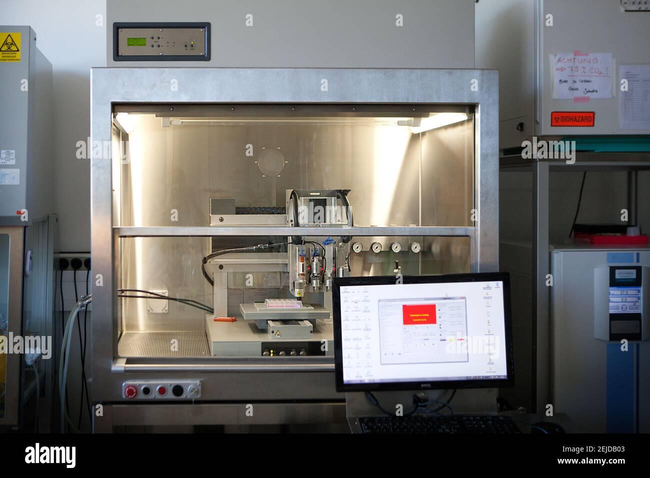 Bioprinter imprimer différents tissus humains en associant les cellules primaires, les biomatériaux et les facteurs de croissance. Banque D'Images