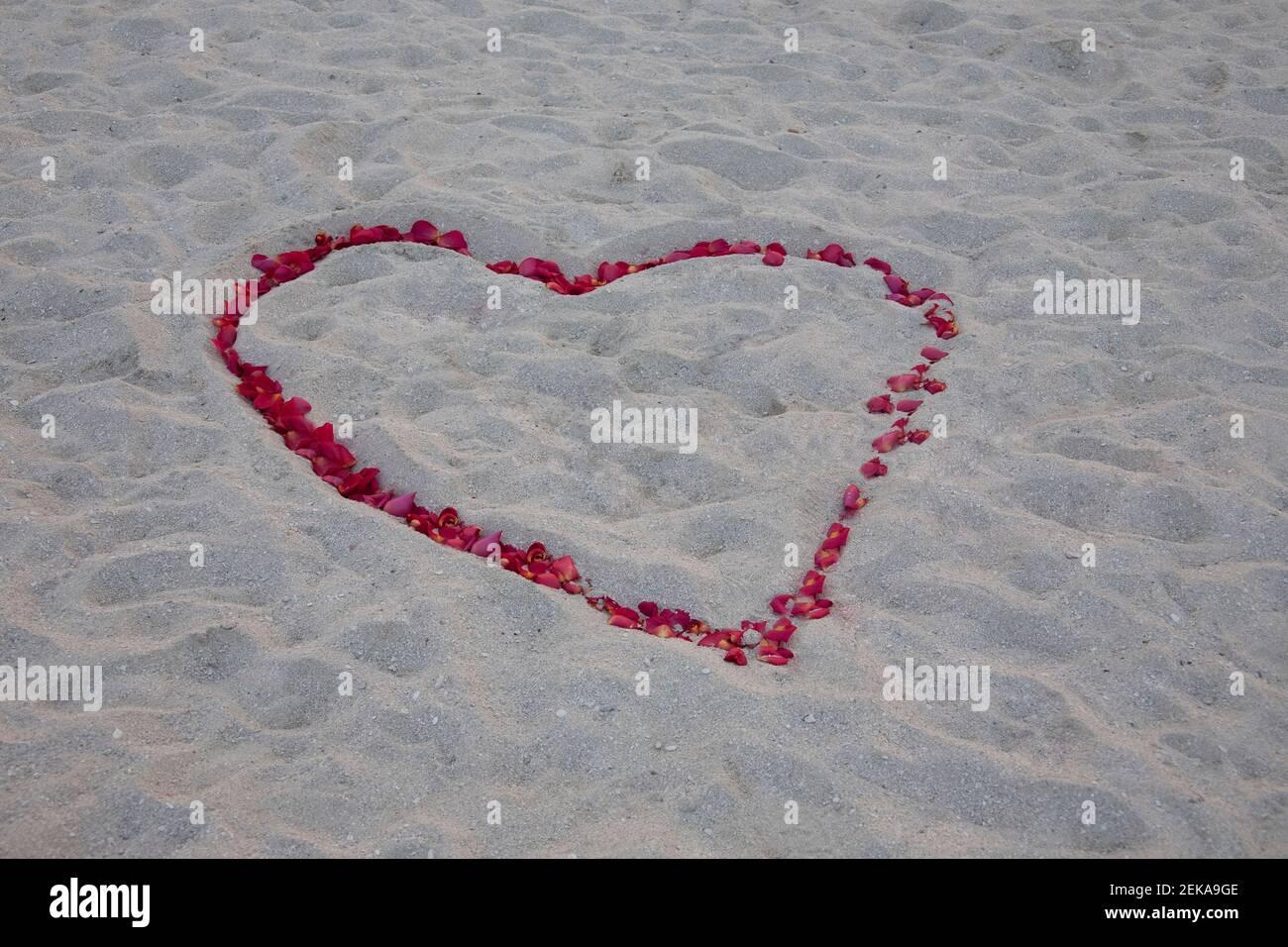 Forme de coeur faite de pétales de rose sur la plage, Miami Beach, Floride, États-Unis Banque D'Images