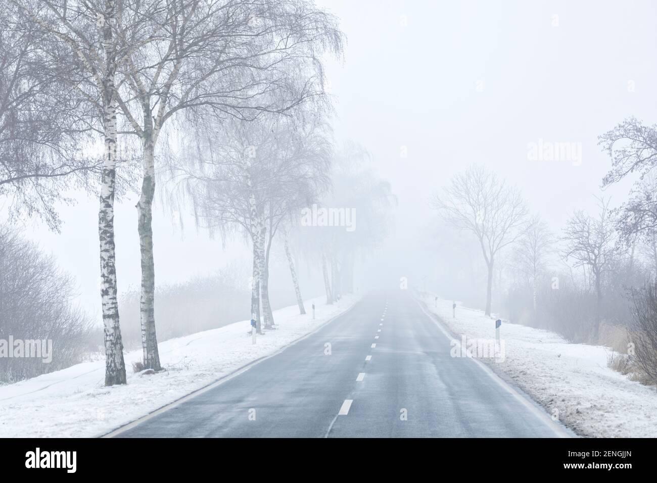 Vider la route rurale en hiver, s'évanouissant dans la brume Banque D'Images
