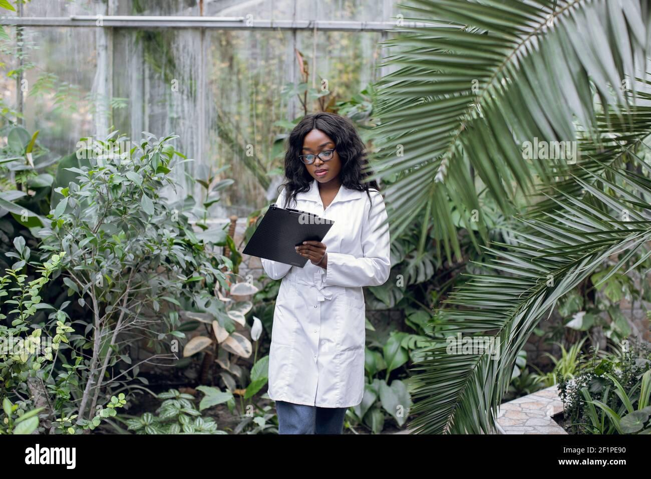 Femme scientifique professionnelle biologiste, femme africaine assez confiante en manteau blanc, debout dans la serre de notes tout en vérifiant les plantes Banque D'Images