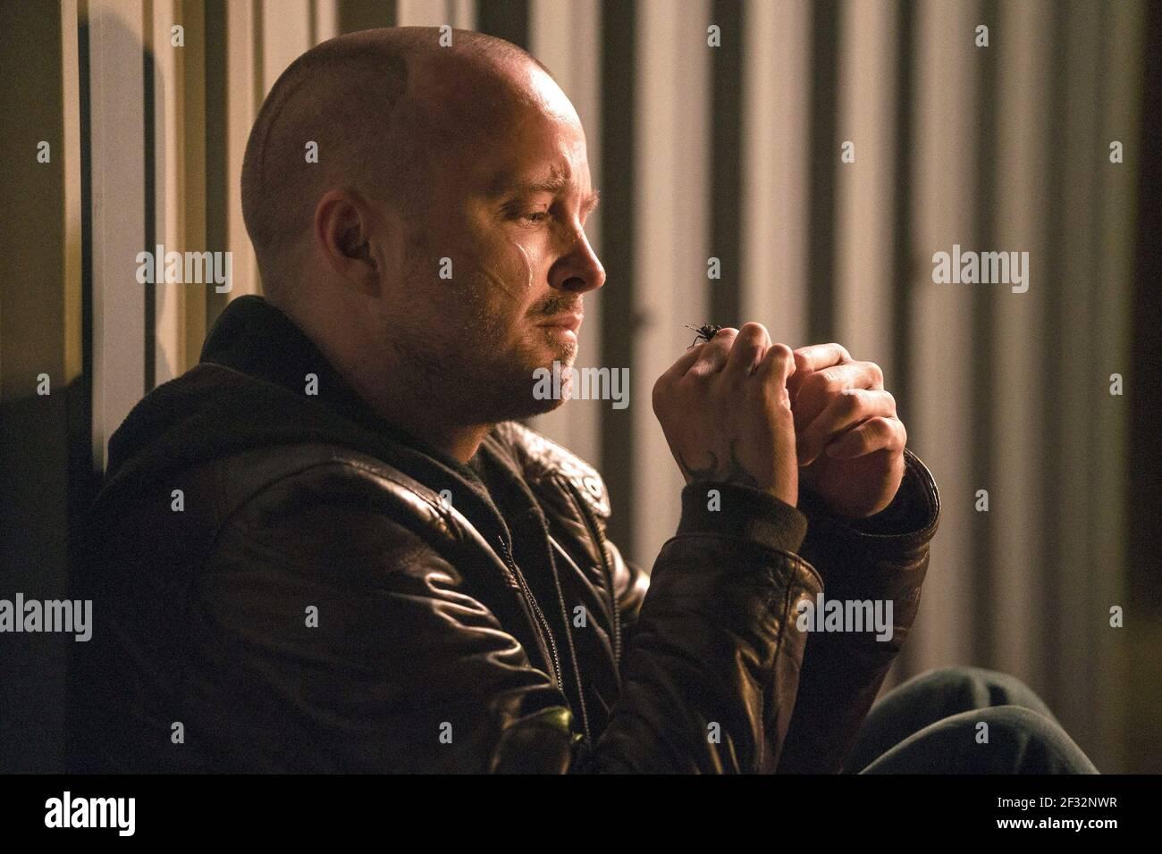 AARON PAUL, EL CAMINO : UN MAUVAIS FILM DÉCHIRANT, 2019, ©BEN ROTHSTEIN/NETFLIX Banque D'Images