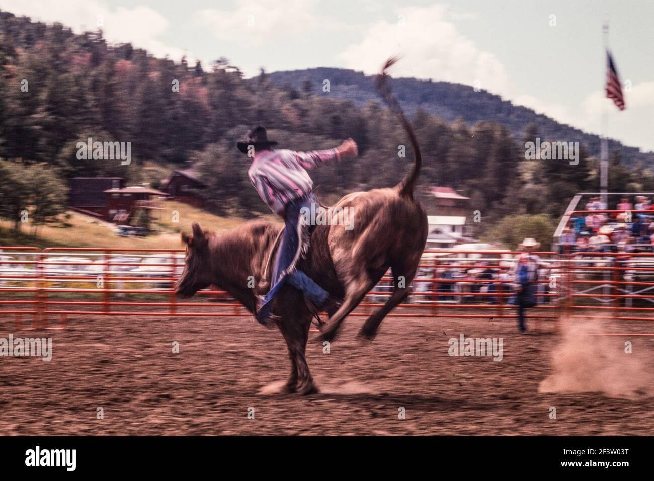 L'image d'un cow-boy de taureau donne un sentiment de monction et de chaos. Banque D'Images