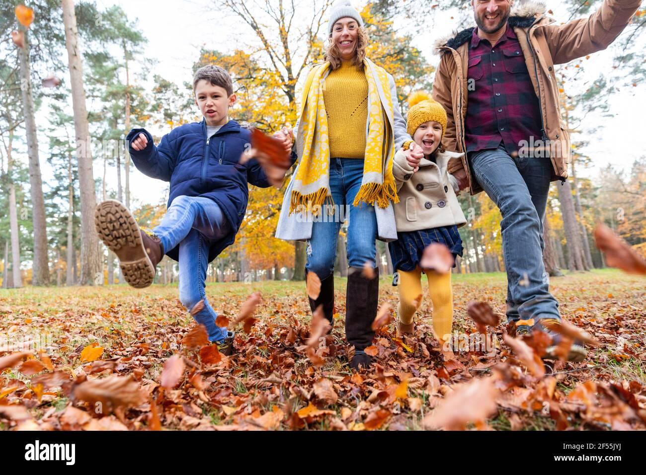 Famille souriante jouant avec la feuille tombée tout en marchant dans la forêt Banque D'Images