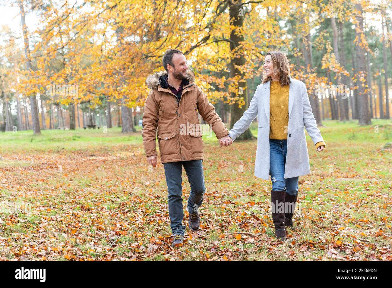 Couple holding hands en marchant dans la forêt Banque D'Images