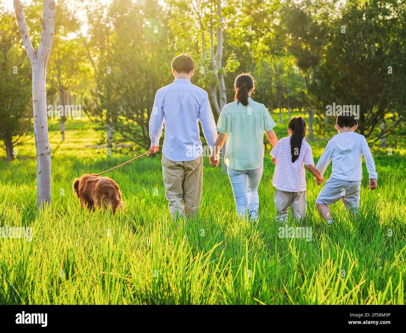 Bonne famille de quatre personnes marchant avec un chien dans le stationnement Banque D'Images