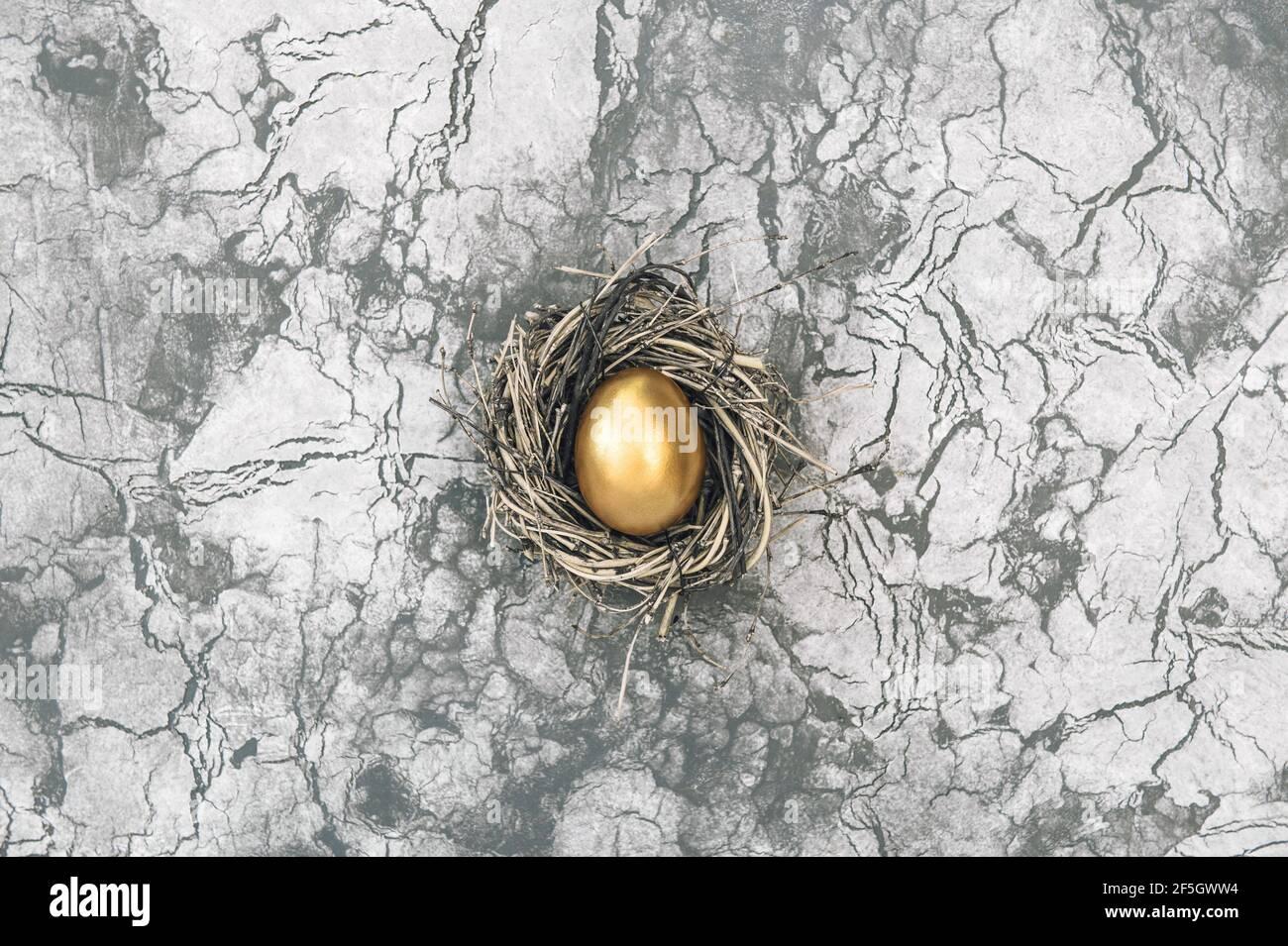 Concept de Pâques. L'œuf de pâques doré dans les oiseaux nichent sur fond de pierre en béton Banque D'Images